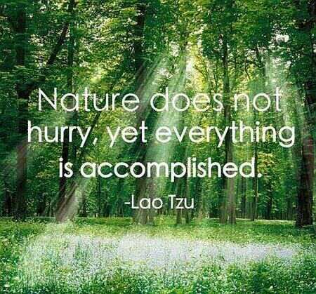 naturedoesnothurry